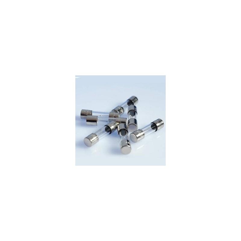 Fusible de cristal 6,3A  5 x 20   10 unidades