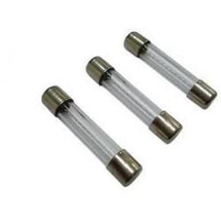 Fusible de cristal 250mA  6 x 32   10 unidades