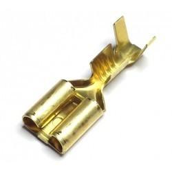 TERMINAL FASTON HEMBRA 6,3mm C/ RETEN 100 UNIDADES