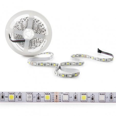 Tira de 360 LEDs SMD 5050 5M RGB-BLANCO IP25