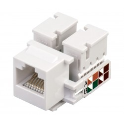 Conector RJ45 Cat.6 UTP hembra panel