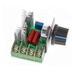 Regulador motor AC 50-220V AC 2000W 10A